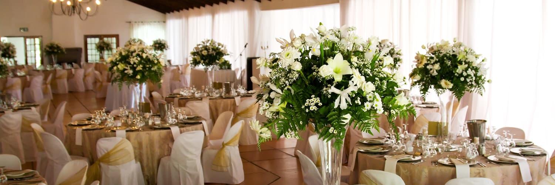 Wedding Venues Near Me Cary IL